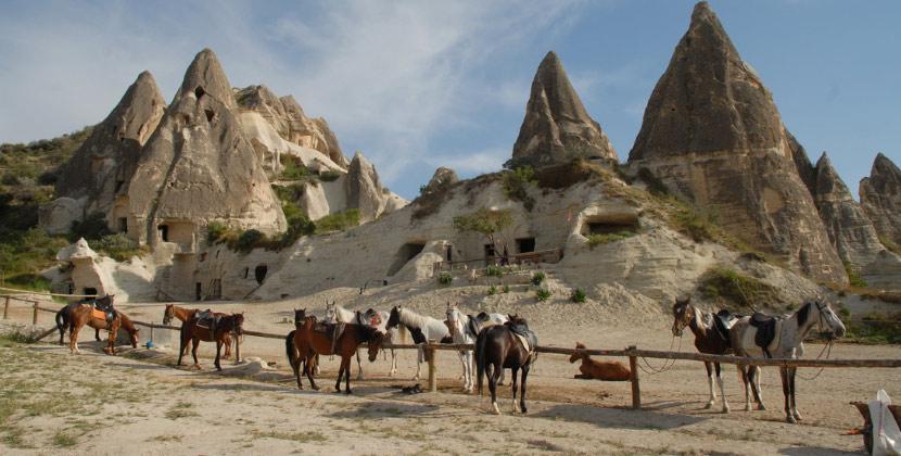 horseback riding safari